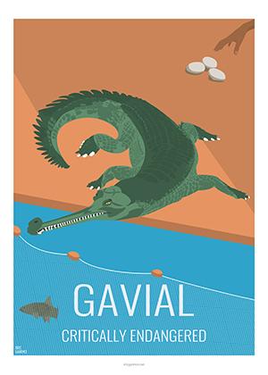 Eric Garence artiste Niçois Gavial croco danger wildlife kids